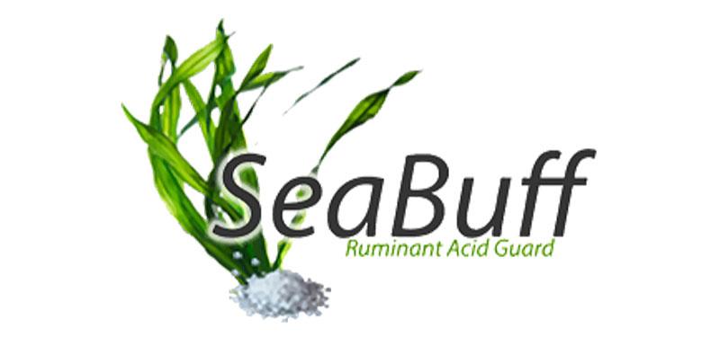 seabuff
