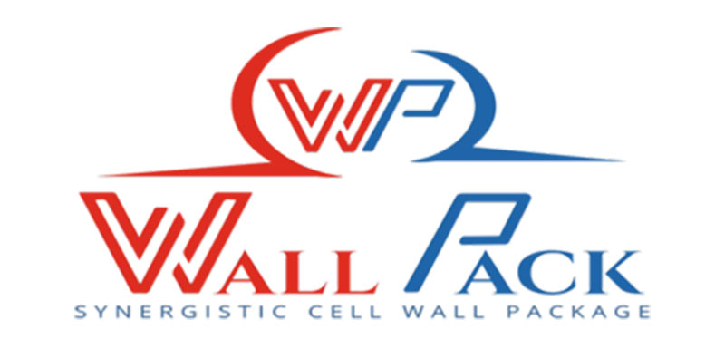 wall-pack